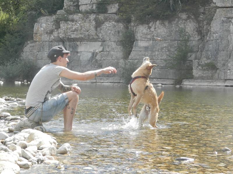 Présentation de Sacha, chien de 6 ans à donner contre BONS SOINS P6140511