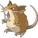 [Cham] Plague Carriers Rats Ratata10