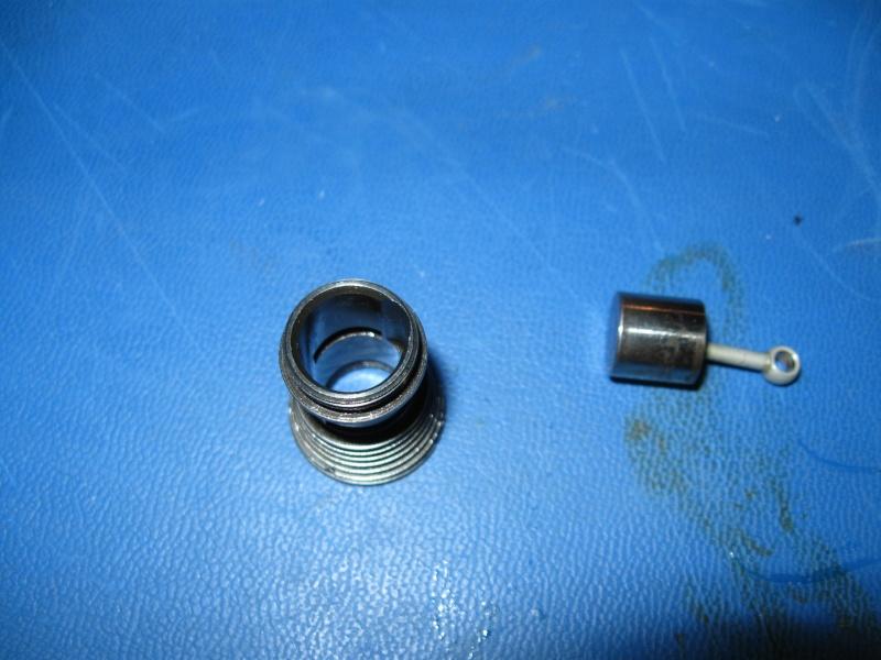 Space Bug ? Cylinder/Piston Img_3116
