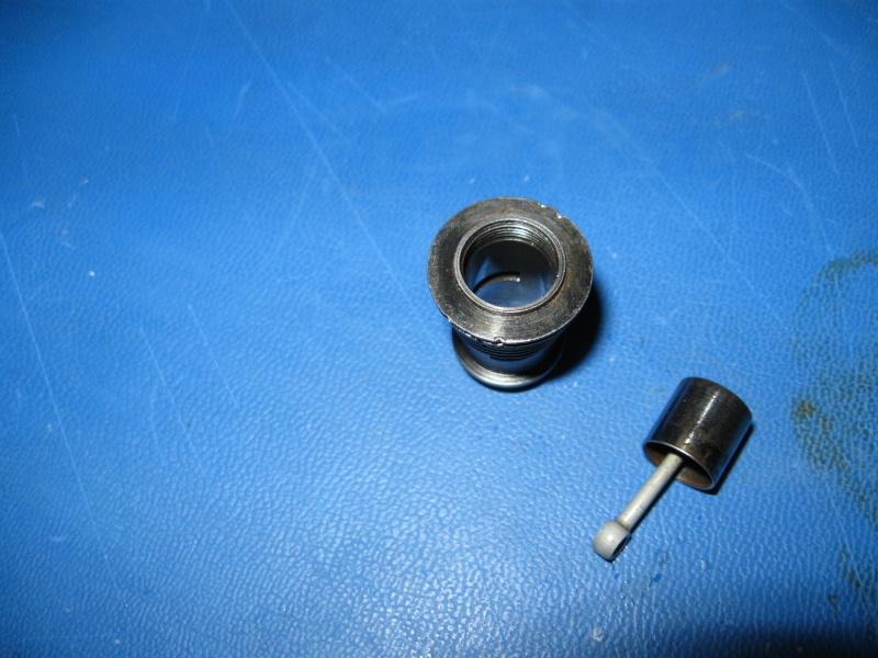 Space Bug ? Cylinder/Piston Img_3117