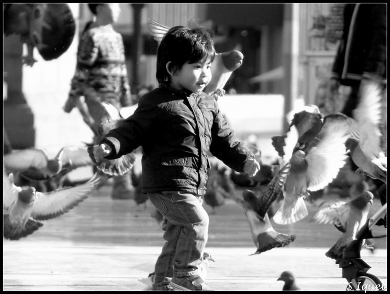 Enfants et pigeons P1120511
