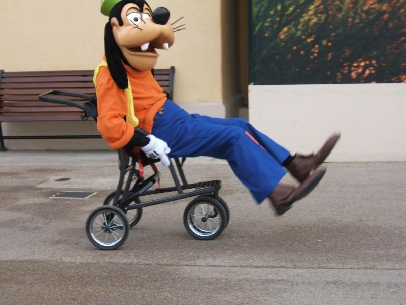 TR 2 jours mère/fille au Séquoia  Disney10
