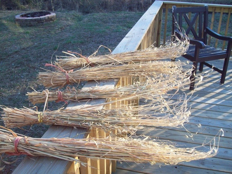 last years oats cut and drying  Moxie_11