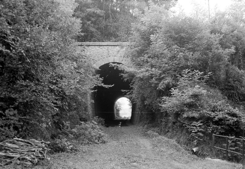 QUIZZ Tunnel10