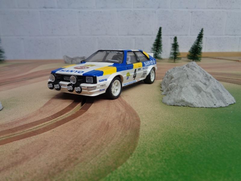 Piste bois de rally Dsc00014