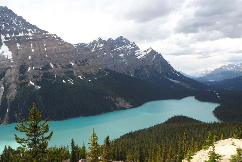 Ouest canadien 16110215