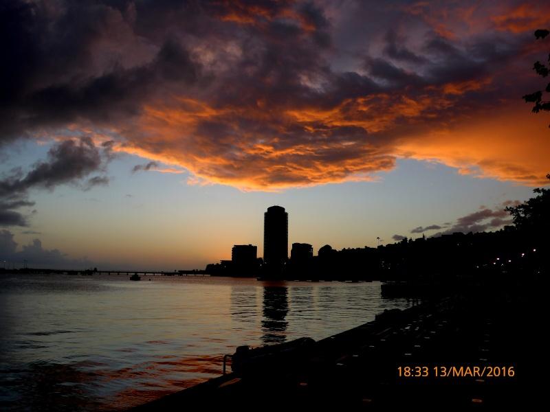 De la Martinique Img_2011