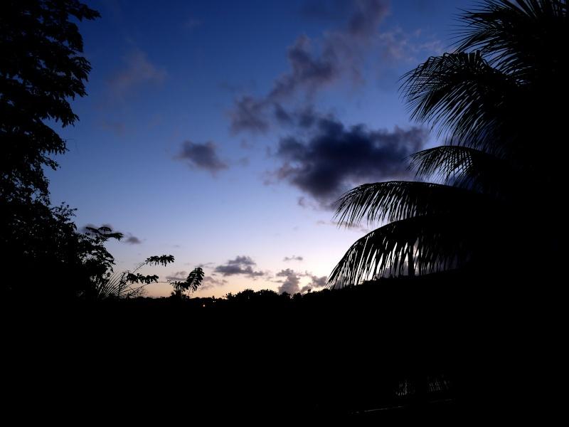 La nuit tombe en Martinique Img_2015