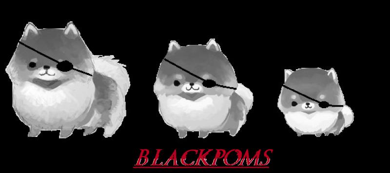 BlackPoms Black Desert Online [Jordine]