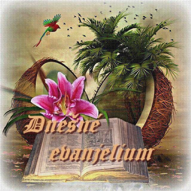 BIBLICKÉ ČÍTANIA NA KAŽDÝ DEŇ 11796310