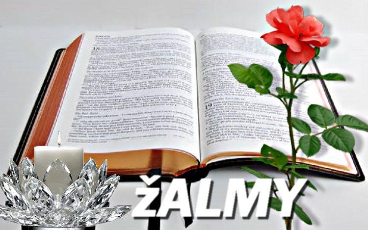 ROZJÍMAJME - Kniha žalmov − Ž 89, 21-22. 25+27 12063310