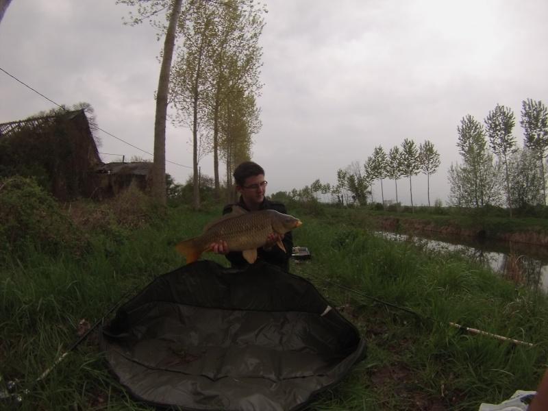 Vos plus jolis poissons (en dehors du poids) Gopr0112