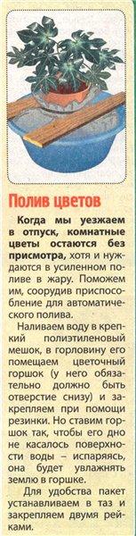 статьи о растениях из  газет и журналов 1b205e10
