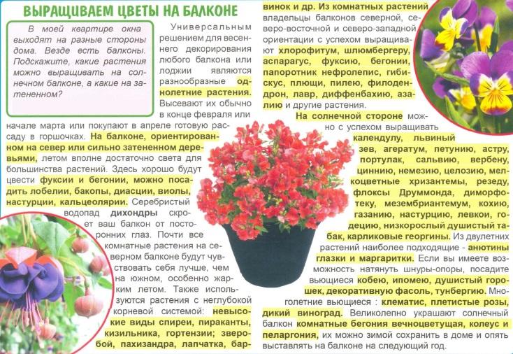 статьи о растениях из  газет и журналов 4ad17610
