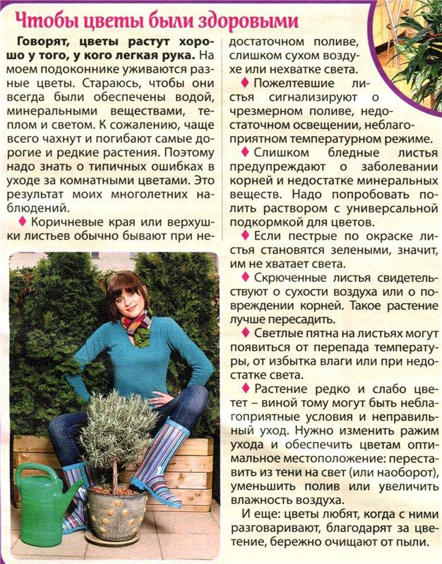 статьи о растениях из  газет и журналов 6dabd610