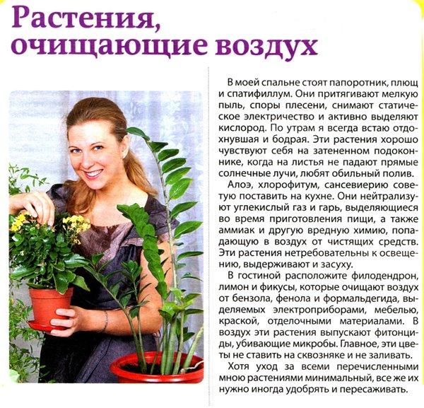 статьи о растениях из  газет и журналов 7d813610
