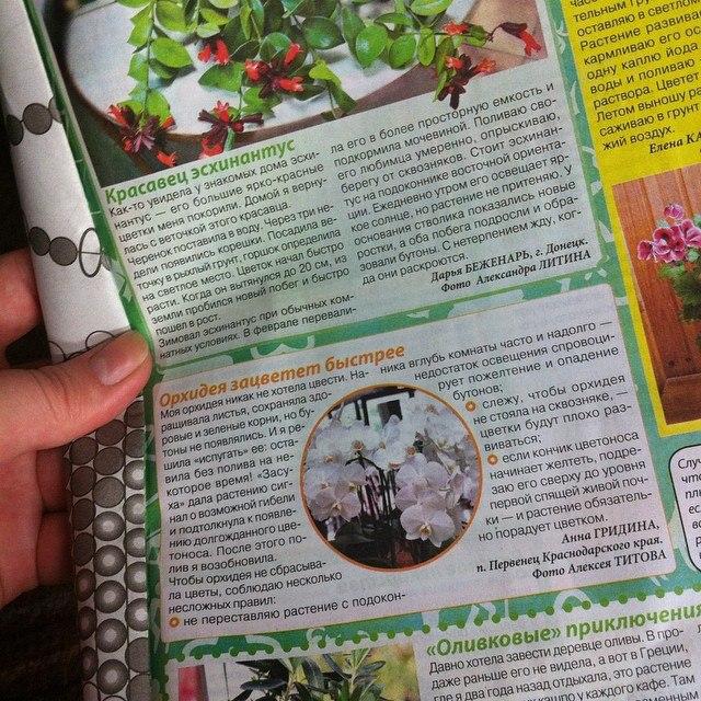 статьи о растениях из  газет и журналов Gwauzc10