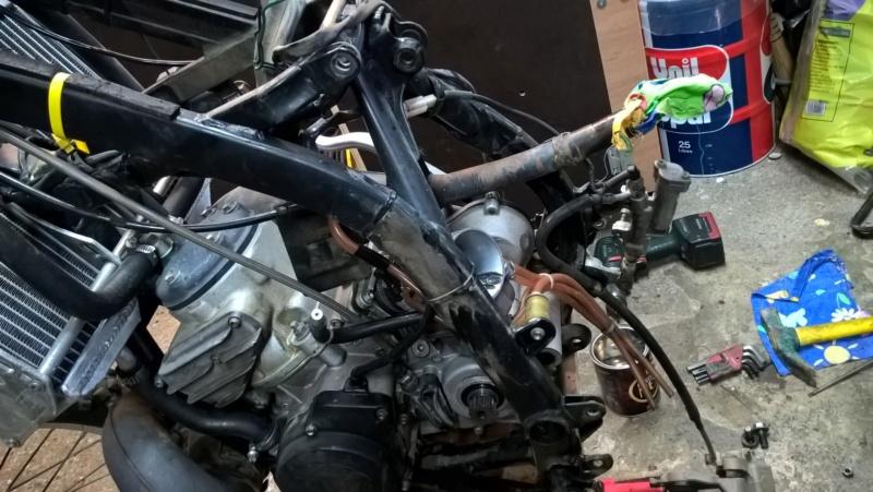 Check-up de mon 300 Gasgas  Image24