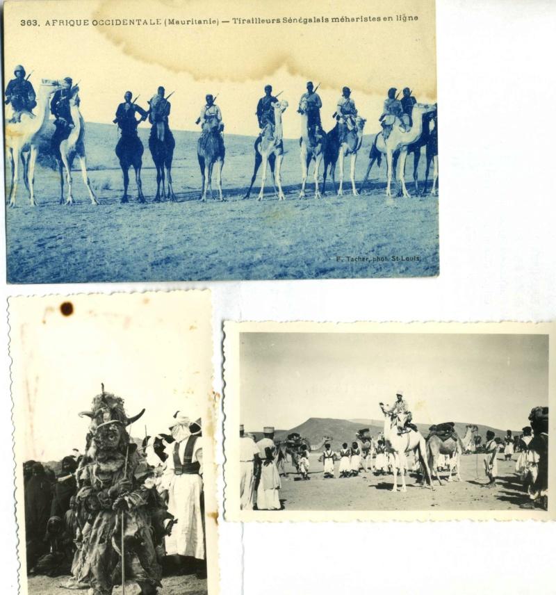photos méharistes et compagnies sahariennes - Levant Sahara Coloniale Img00410