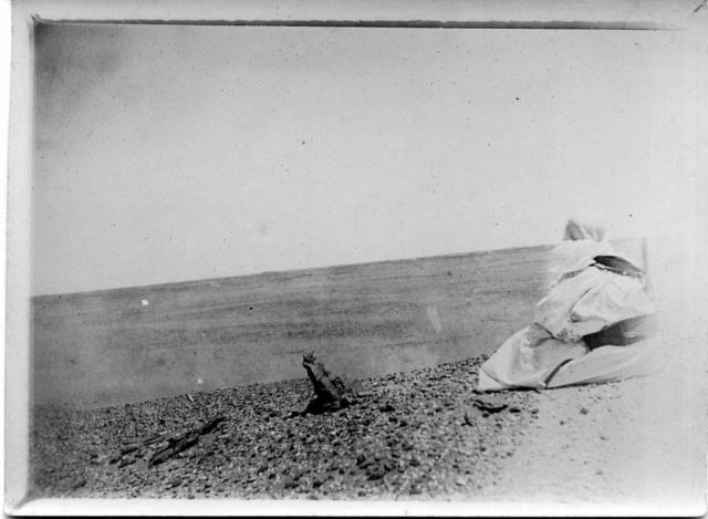 La Mission Flamand 1899-1900 El Goléa Mili0910