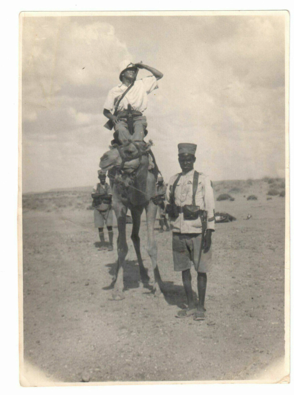 Képi de capitaine de la Coloniale...Méhariste 1920 S110