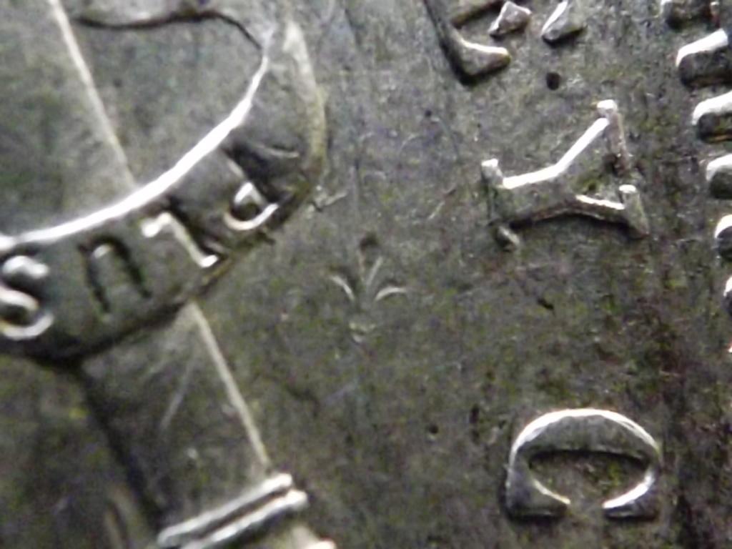 5 Pesetas de 1.891, Alfonso Xlll. Contramarcada con una flor de lys. Dscf7328