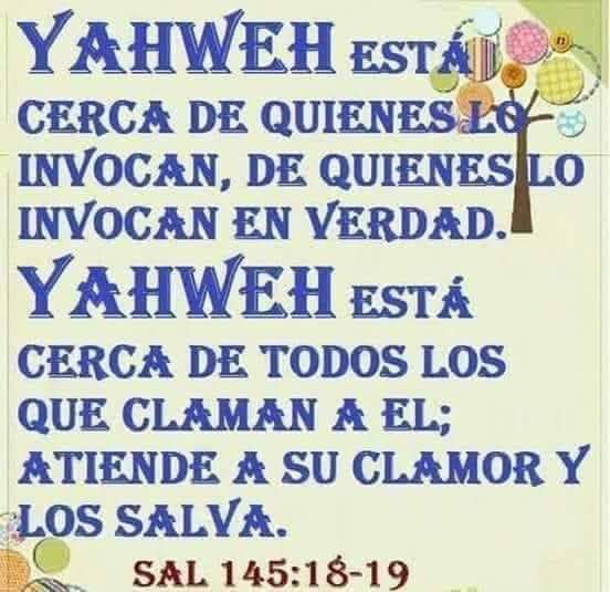 Shalom, yom tov - Página 15 Fb_img11
