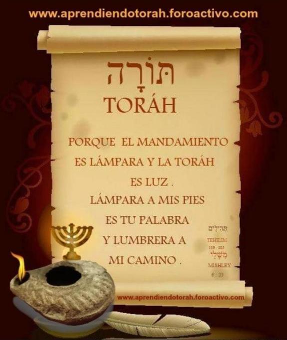 Shalom, yom tov - Página 10 Pf_15311