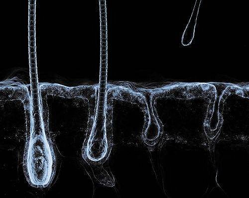 Под микроскопом (обновлено) 2h7isn11