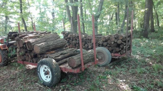 Izrada ogrijevnog drva - Page 23 Img_2010