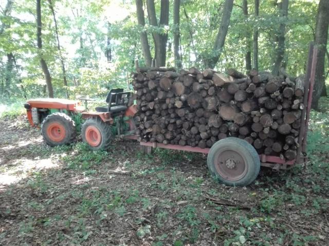Izrada ogrijevnog drva - Page 23 Img_2011