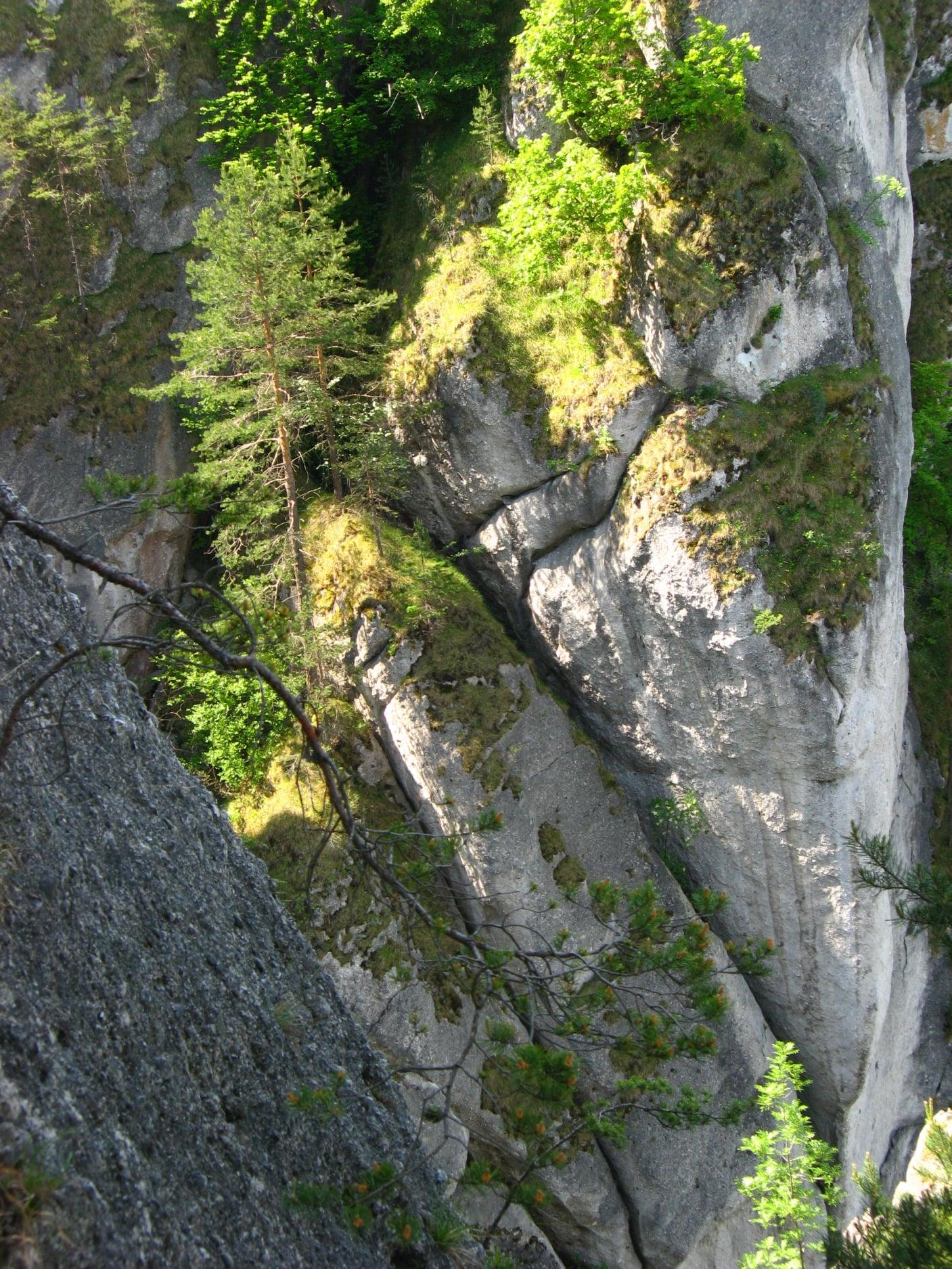 Súľovské skaly 1510