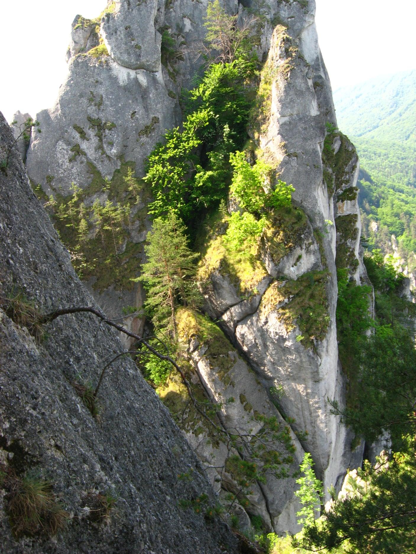 Súľovské skaly 1610