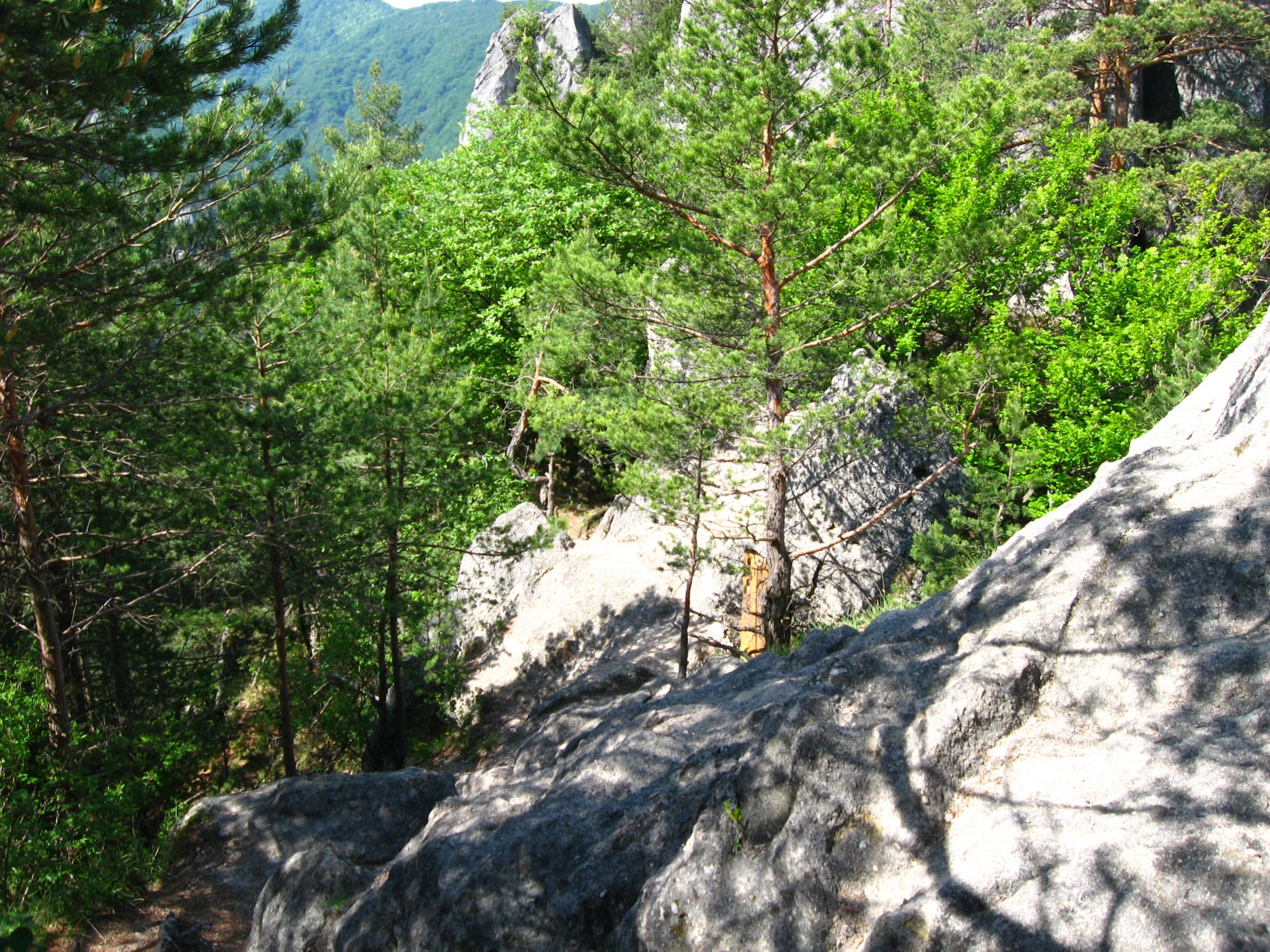 Súľovské skaly 2910