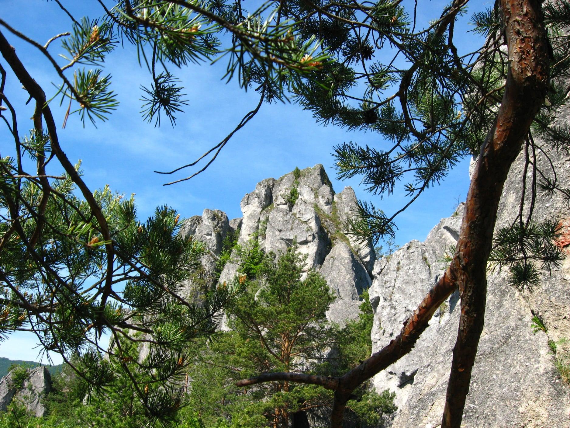 Súľovské skaly 3010