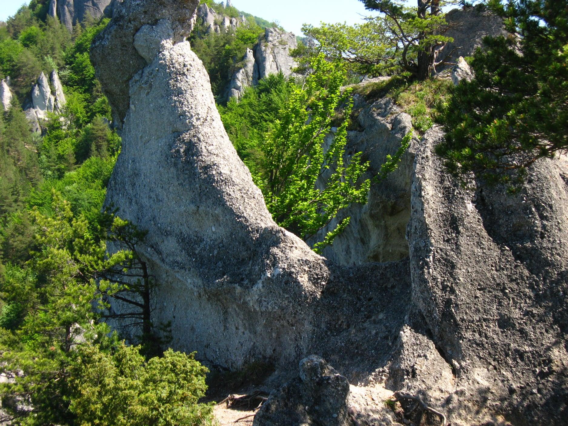 Súľovské skaly 3710