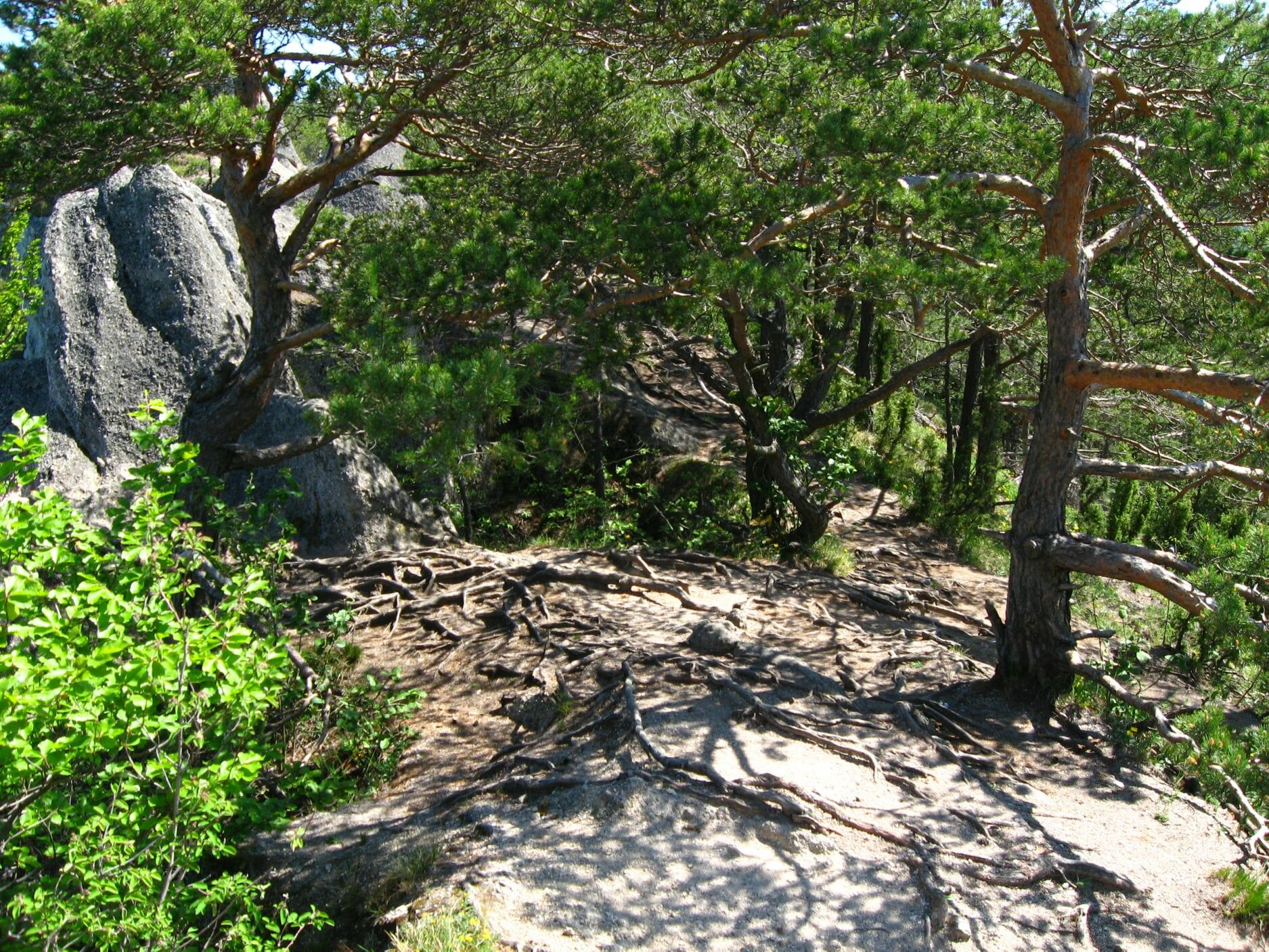 Súľovské skaly 3910