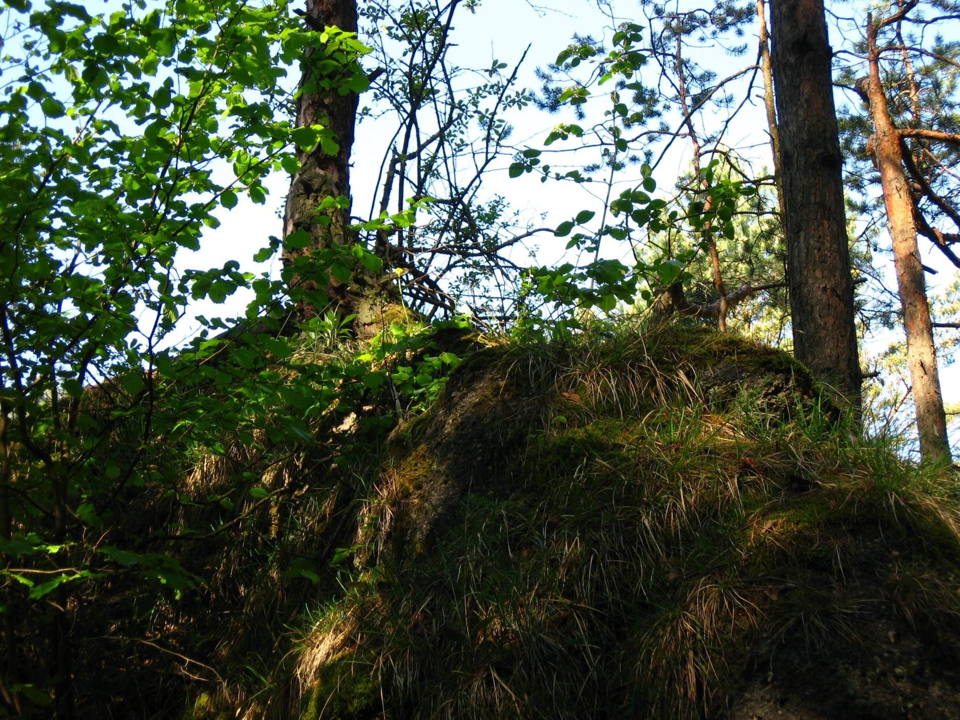 Súľovské skaly 6110
