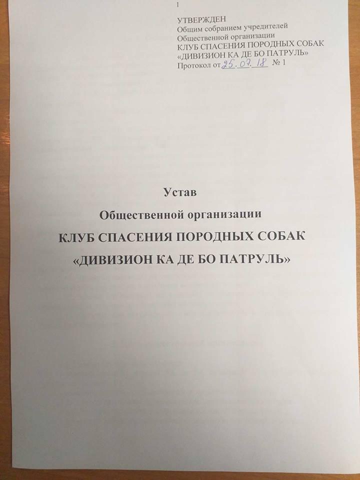 Учредительные документы общественной организации 110