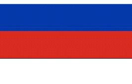 Пякин В.В. - К вопросу об историческом прошлом «российского» триколора 10