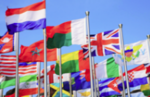 Питер Мейер - Великая фальсификация 2020/11/25 Flags-14