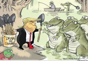 Питер Мейер - Обесцениватели денег 2021/01/18 Swamp-11