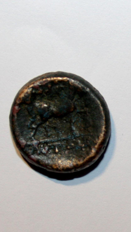 AE17 de Amphipolis. Macedonia. Img_0814