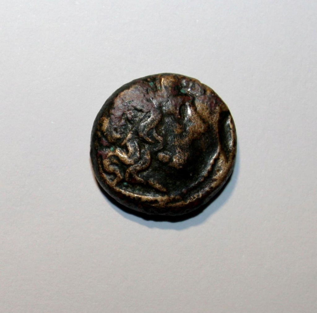 AE17 de Amphipolis. Macedonia. Img_0815