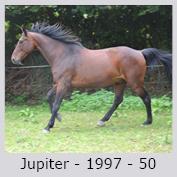 Galop Pour La Vie Jupite10