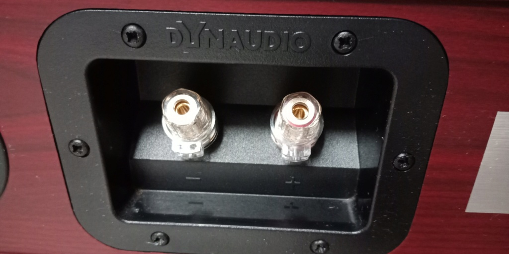 Preowned Dynaudio DM Centre For Sale RM1800.00 Img20113