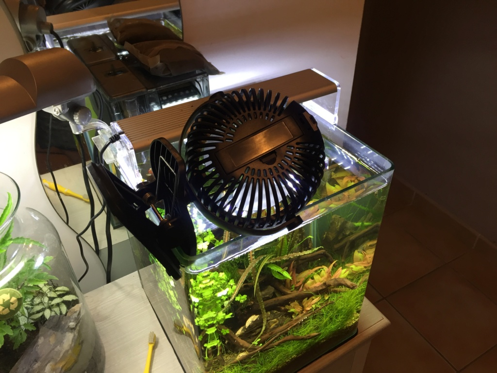 [Test] 3 types de ventilateur E6d36c10