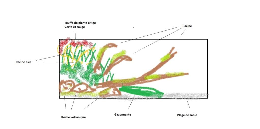 [PROJET]240l tetraodons et gobies-abeille eau saumâtre - Page 4 Test_110