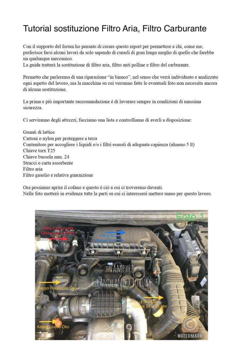 Tutorial Cambio Filtro Carburante e Aria Filtro12