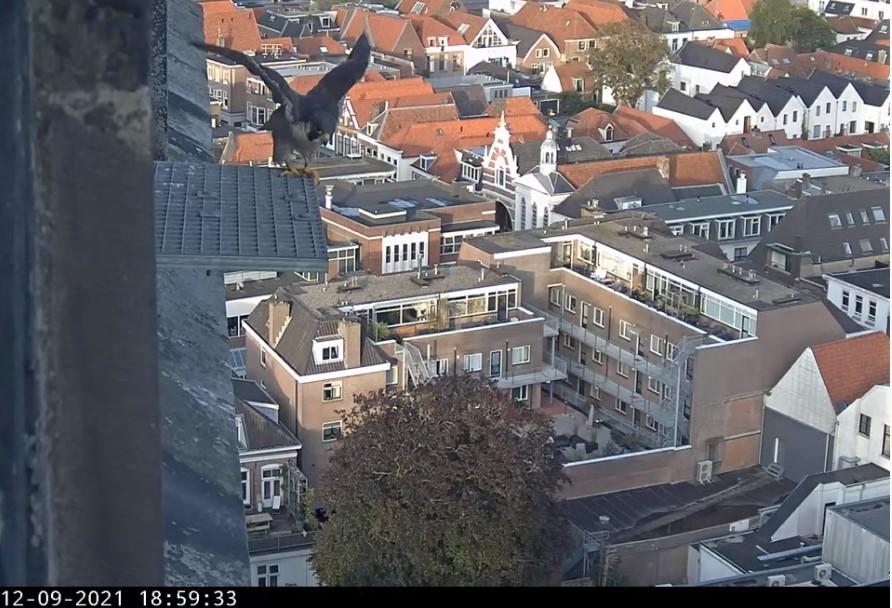 Amersfoort/OLV toren - Pagina 9 A_fooe10